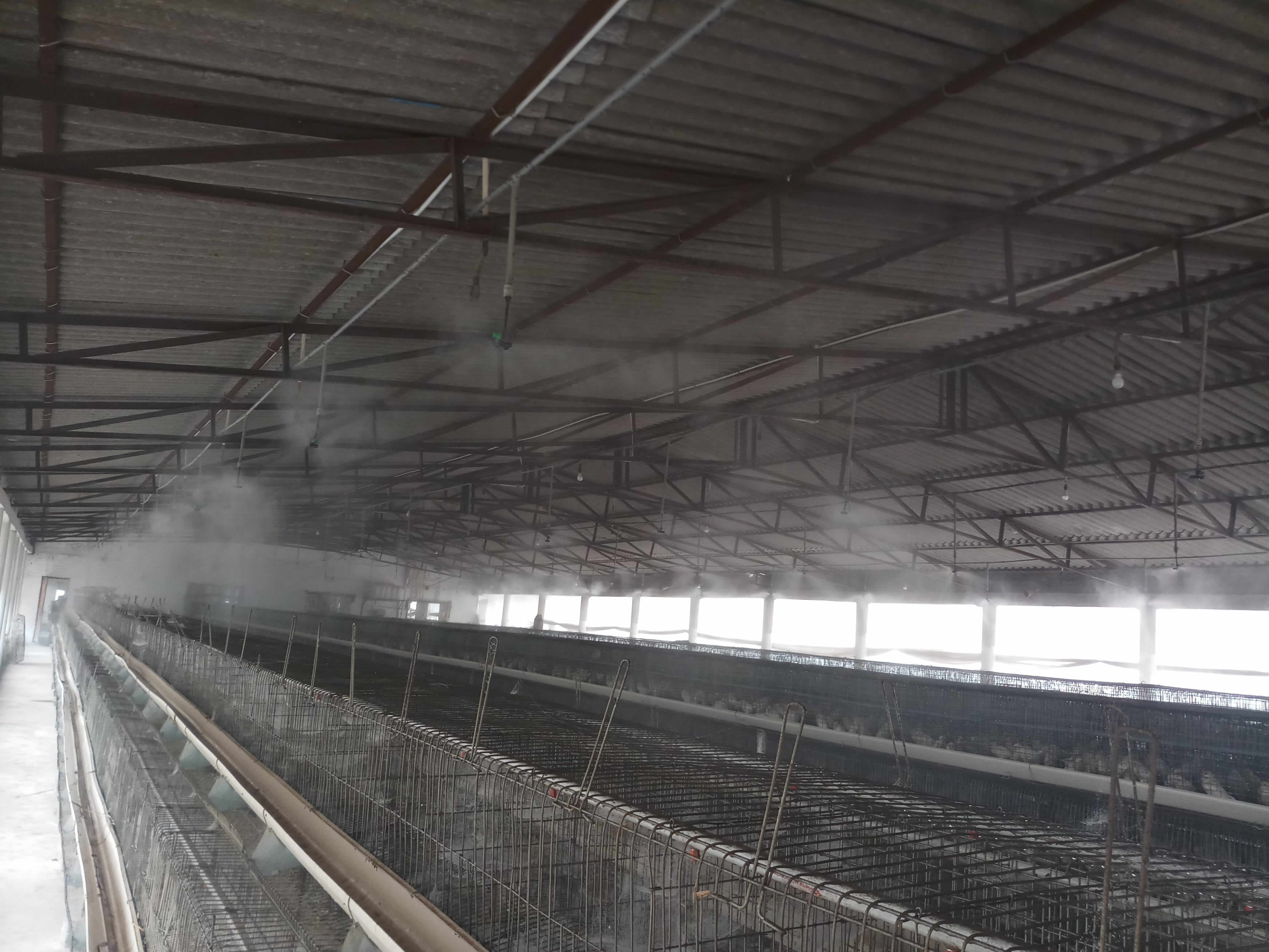 Irrigation Systems for Poultry and Cowsheds