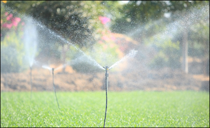 Mini Sprinklers